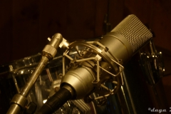 Queen Studio Experience --018